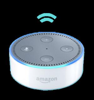 Lutron and Alexa Voice Control
