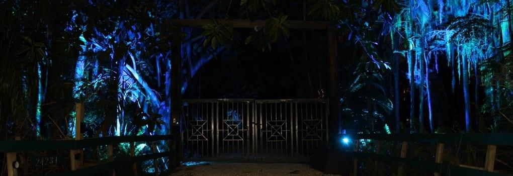 Color Select Outdoor LED Landscape Lighting